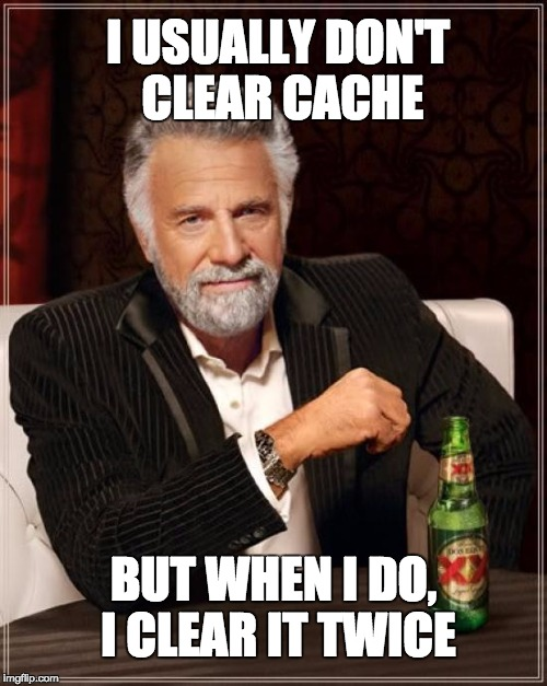 I USUALLY DON'T CLEAR CACHE BUT WHEN I DO, I CLEAR IT TWICE | image tagged in don't usually guy | made w/ Imgflip meme maker