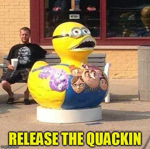 Release the Quackin | RELEASE THE QUACKIN | image tagged in quackin | made w/ Imgflip meme maker