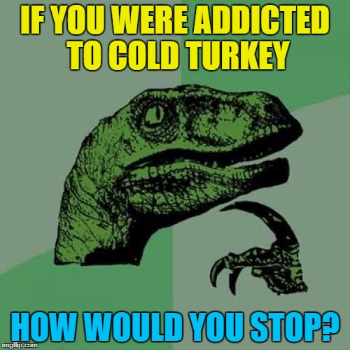 You could go cold tur... Never mind :) | IF YOU WERE ADDICTED TO COLD TURKEY HOW WOULD YOU STOP? | image tagged in memes,philosoraptor,cold turkey,addiction,food,animals | made w/ Imgflip meme maker