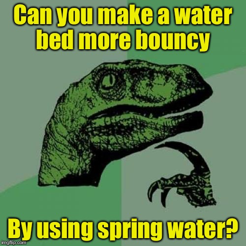 Philosoraptor Meme | Can you make a water bed more bouncy By using spring water? | image tagged in memes,philosoraptor | made w/ Imgflip meme maker