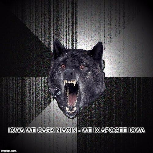 Insanity Wolf Meme | IOWA WE CASK NIACIN - WE IX APOGEE IOWA | image tagged in memes,insanity wolf,normality | made w/ Imgflip meme maker