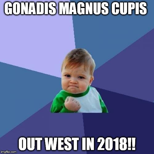 Success Kid Meme | GONADIS MAGNUS CUPIS OUT WEST IN 2018!! | image tagged in memes,success kid | made w/ Imgflip meme maker