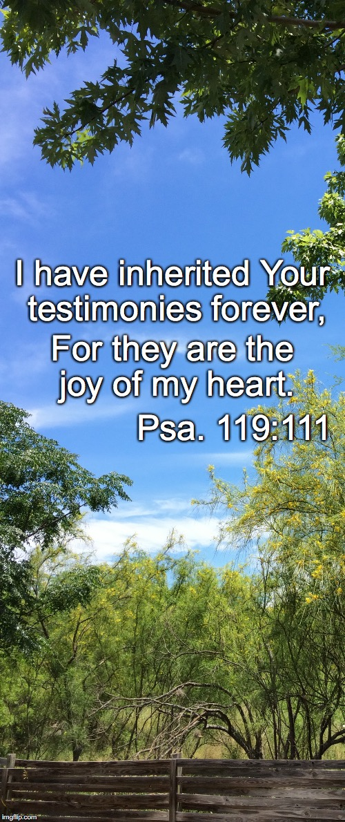 I have inherited Your testimonies forever, For they are the joy of my heart. Psa. 119:111 | image tagged in forever | made w/ Imgflip meme maker