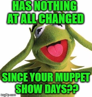 scared kermit | HAS NOTHING AT ALL CHANGED SINCE YOUR MUPPET SHOW DAYS?? | image tagged in scared kermit | made w/ Imgflip meme maker