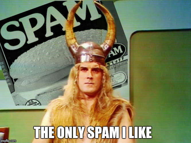 Spam , spam , spam . . . | THE ONLY SPAM I LIKE | image tagged in spam | made w/ Imgflip meme maker