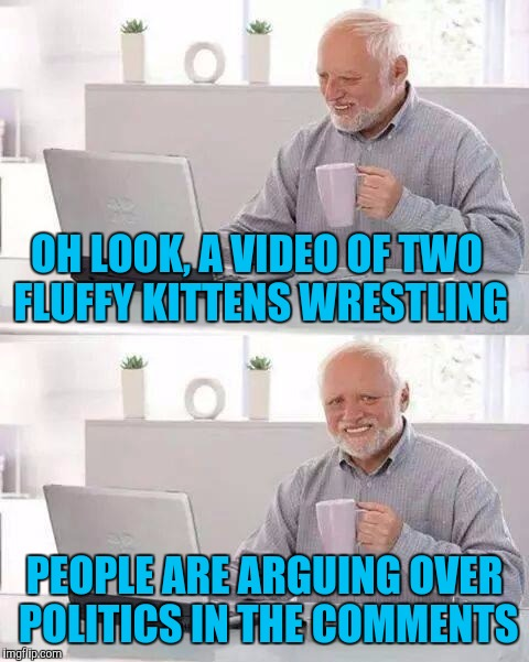 This is all Facebook is anymore and it pisses me off | OH LOOK, A VIDEO OF TWO FLUFFY KITTENS WRESTLING PEOPLE ARE ARGUING OVER POLITICS IN THE COMMENTS | image tagged in memes,hide the pain harold,facebook,politics | made w/ Imgflip meme maker