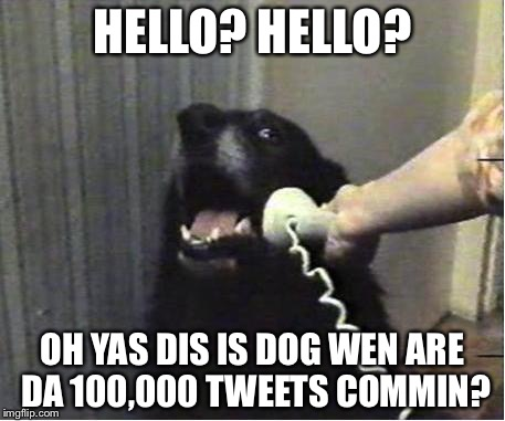 Yes this is dog | HELLO? HELLO? OH YAS DIS IS DOG WEN ARE DA 100,000 TWEETS COMMIN? | image tagged in yes this is dog | made w/ Imgflip meme maker