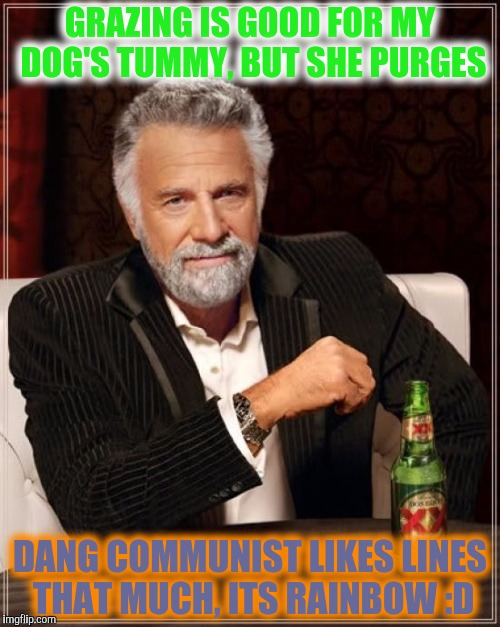 The Most Interesting Man In The World Meme | GRAZING IS GOOD FOR MY DOG'S TUMMY, BUT SHE PURGES DANG COMMUNIST LIKES LINES THAT MUCH, ITS RAINBOW :D | image tagged in memes,the most interesting man in the world | made w/ Imgflip meme maker