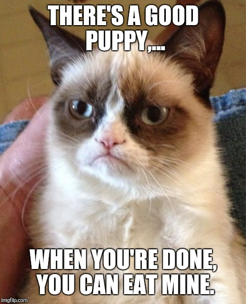 Grumpy Cat Meme | THERE'S A GOOD PUPPY,... WHEN YOU'RE DONE, YOU CAN EAT MINE. | image tagged in memes,grumpy cat | made w/ Imgflip meme maker