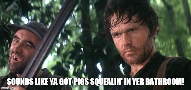 SOUNDS LIKE YA GOT PIGS SQUEALIN' IN YER BATHROOM! | made w/ Imgflip meme maker