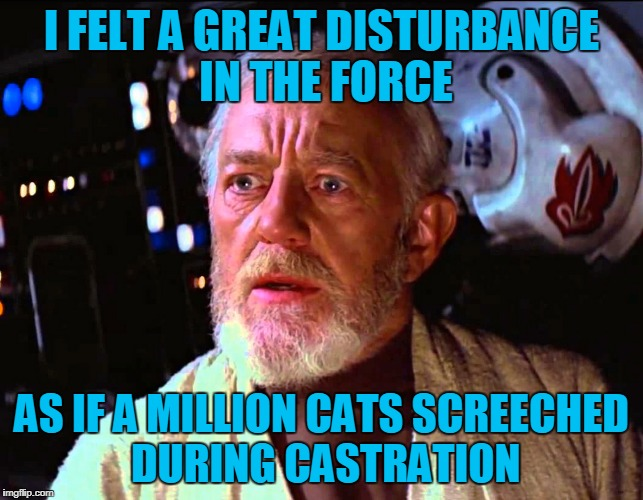 I FELT A GREAT DISTURBANCE IN THE FORCE AS IF A MILLION CATS SCREECHED DURING CASTRATION | made w/ Imgflip meme maker