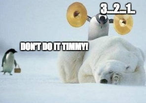Balls of Steel  | 3...2...1.. DON'T DO IT TIMMY! | image tagged in funny penguin,courage,brave,animals,funny,funny animal meme | made w/ Imgflip meme maker