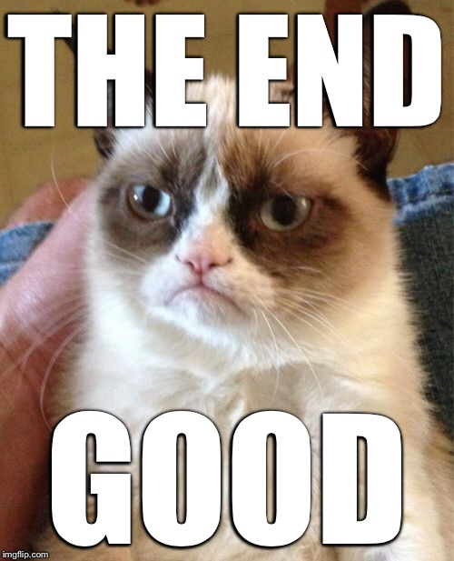 Grumpy Cat Meme | THE END GOOD | image tagged in memes,grumpy cat | made w/ Imgflip meme maker