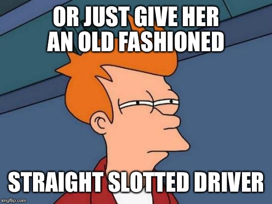 Futurama Fry Meme | OR JUST GIVE HER AN OLD FASHIONED STRAIGHT SLOTTED DRIVER | image tagged in memes,futurama fry | made w/ Imgflip meme maker