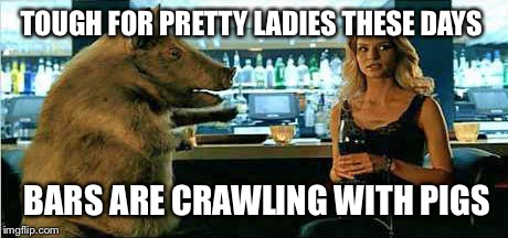 TOUGH FOR PRETTY LADIES THESE DAYS BARS ARE CRAWLING WITH PIGS | made w/ Imgflip meme maker
