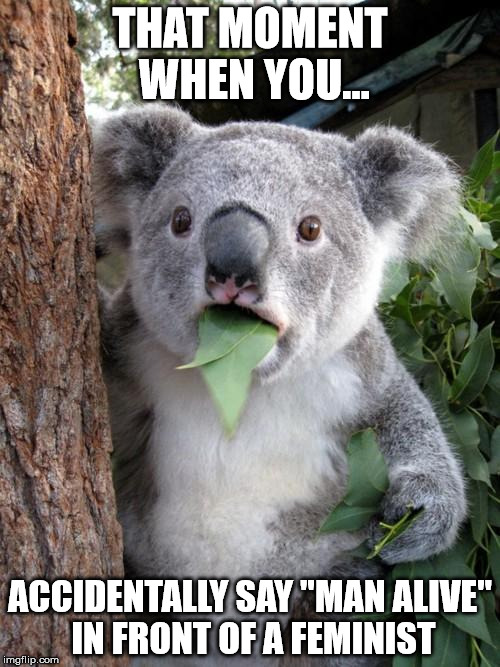 "Surprised Koala Meme | THAT MOMENT WHEN YOU... ACCIDENTALLY SAY ""MAN ALIVE"" IN FRONT OF A FEMINIST 