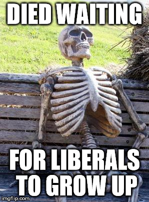 Waiting Skeleton Meme | DIED WAITING FOR LIBERALS TO GROW UP | image tagged in memes,waiting skeleton | made w/ Imgflip meme maker