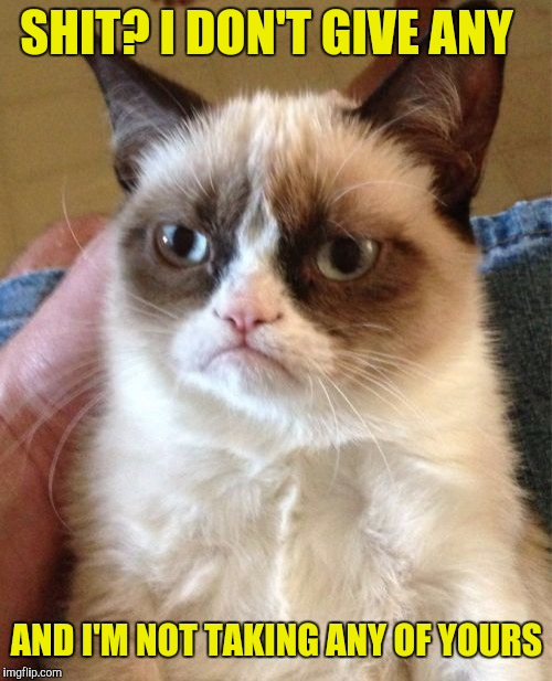 Grumpy Cat Meme | SHIT? I DON'T GIVE ANY AND I'M NOT TAKING ANY OF YOURS | image tagged in memes,grumpy cat | made w/ Imgflip meme maker