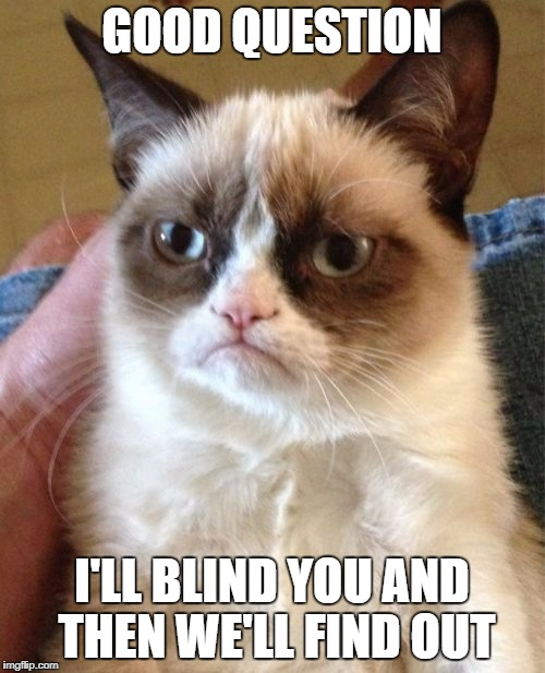 Grumpy Cat Meme | GOOD QUESTION I'LL BLIND YOU AND THEN WE'LL FIND OUT | image tagged in memes,grumpy cat | made w/ Imgflip meme maker