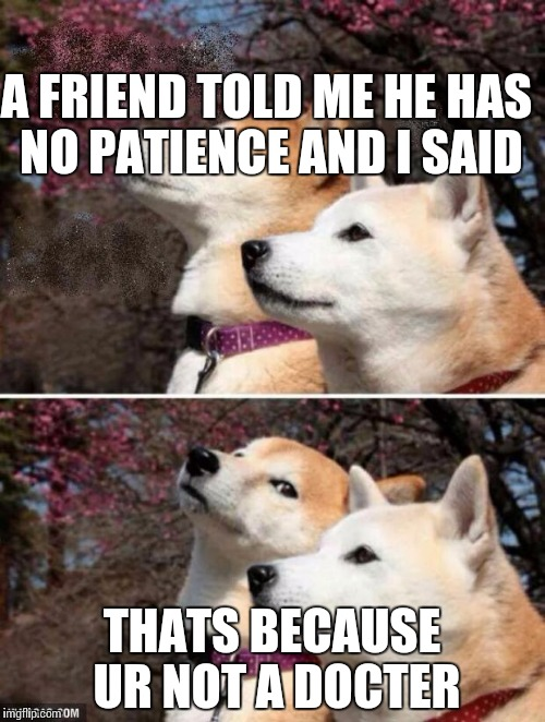 constipation dogs | A FRIEND TOLD ME HE HAS NO PATIENCE AND I SAID THATS BECAUSE UR NOT A DOCTER | image tagged in constipation dogs | made w/ Imgflip meme maker