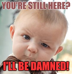 Skeptical Baby Meme | YOU'RE STILL HERE? I'LL BE DAMNED! | image tagged in memes,skeptical baby | made w/ Imgflip meme maker