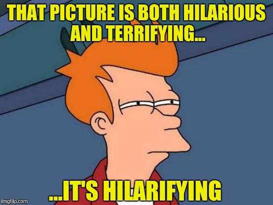 Futurama Fry Meme | THAT PICTURE IS BOTH HILARIOUS AND TERRIFYING... ...IT'S HILARIFYING | image tagged in memes,futurama fry | made w/ Imgflip meme maker