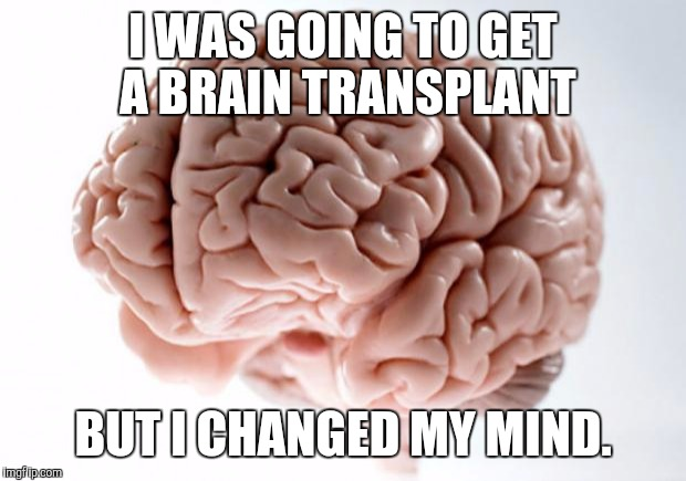 I THOUGHT of a Brain Pun | I WAS GOING TO GET A BRAIN TRANSPLANT BUT I CHANGED MY MIND. | image tagged in scumbag brain | made w/ Imgflip meme maker