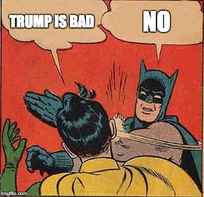 Batman Slapping Robin Meme | TRUMP IS BAD NO | image tagged in memes,batman slapping robin | made w/ Imgflip meme maker