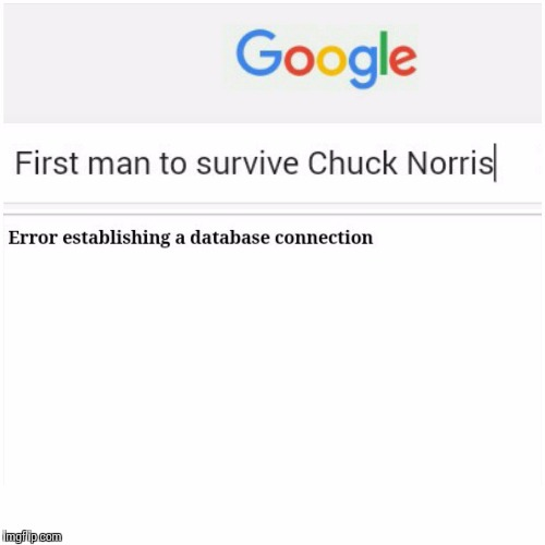 No Survivors | image tagged in memes,funny | made w/ Imgflip meme maker