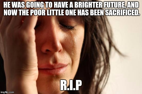 HE WAS GOING TO HAVE A BRIGHTER FUTURE, AND NOW THE POOR LITTLE ONE HAS BEEN SACRIFICED. R.I.P | image tagged in memes,first world problems | made w/ Imgflip meme maker