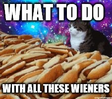 space cats and hot dogs | WHAT TO DO WITH ALL THESE WIENERS | image tagged in space cats and hot dogs | made w/ Imgflip meme maker