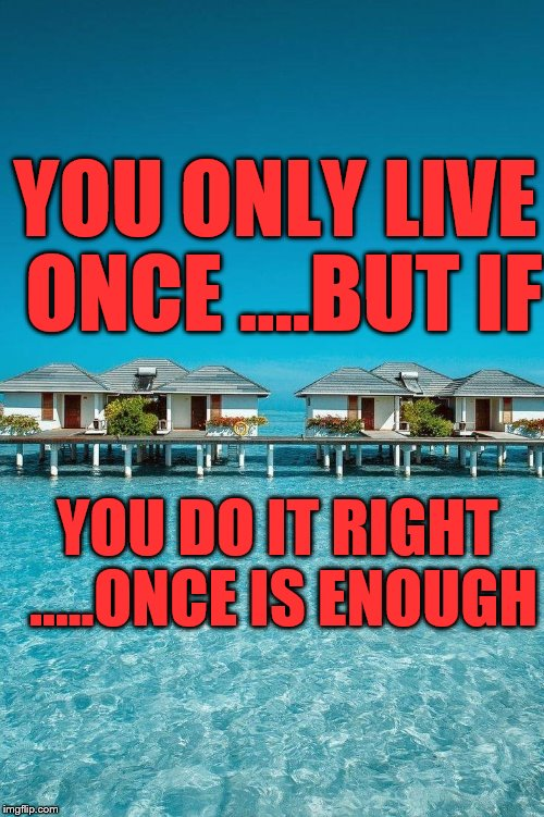 YOU ONLY LIVE ONCE ....BUT IF YOU DO IT RIGHT .....ONCE IS ENOUGH | image tagged in true life | made w/ Imgflip meme maker