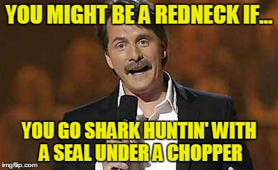 Jeff Foxworthy you might be a redneck | YOU MIGHT BE A REDNECK IF... YOU GO SHARK HUNTIN' WITH A SEAL UNDER A CHOPPER | image tagged in jeff foxworthy you might be a redneck | made w/ Imgflip meme maker