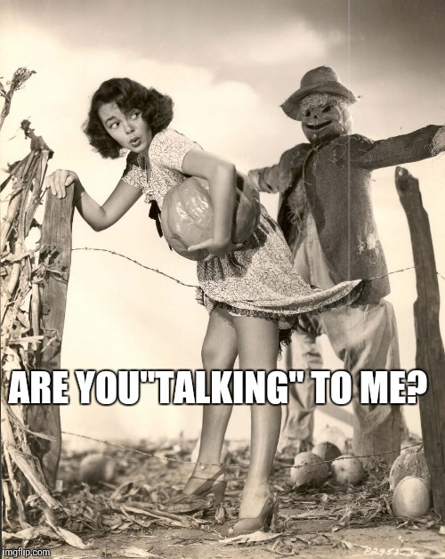 "Me On A Friday | ARE YOU""TALKING"" TO ME? 