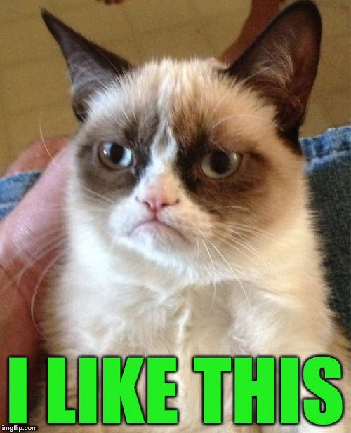 Grumpy Cat Meme | I LIKE THIS | image tagged in memes,grumpy cat | made w/ Imgflip meme maker