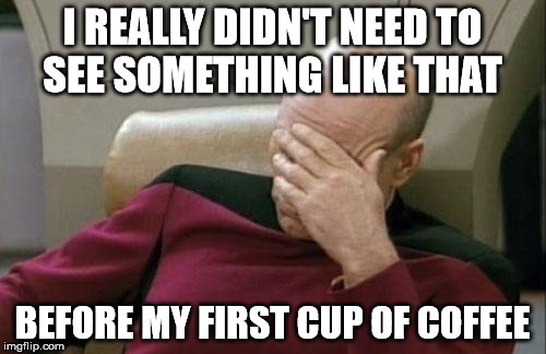 Captain Picard Facepalm Meme | I REALLY DIDN'T NEED TO SEE SOMETHING LIKE THAT BEFORE MY FIRST CUP OF COFFEE | image tagged in memes,captain picard facepalm | made w/ Imgflip meme maker