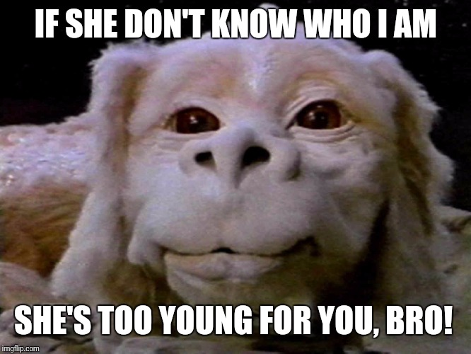 Luck dragons and tree stars... icons of an era.  | IF SHE DON'T KNOW WHO I AM SHE'S TOO YOUNG FOR YOU, BRO! | image tagged in neverending story,falkor,dragon | made w/ Imgflip meme maker