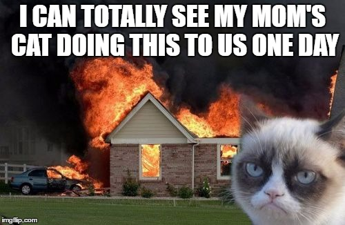 Burn Kitty |  I CAN TOTALLY SEE MY MOM'S CAT DOING THIS TO US ONE DAY | image tagged in memes,burn kitty,grumpy cat | made w/ Imgflip meme maker