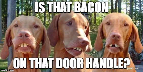 IS THAT BACON ON THAT DOOR HANDLE? | made w/ Imgflip meme maker