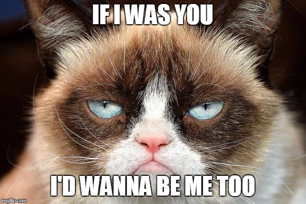 Grumpy Cat Not Amused Meme | IF I WAS YOU I'D WANNA BE ME TOO | image tagged in memes,grumpy cat not amused,grumpy cat | made w/ Imgflip meme maker