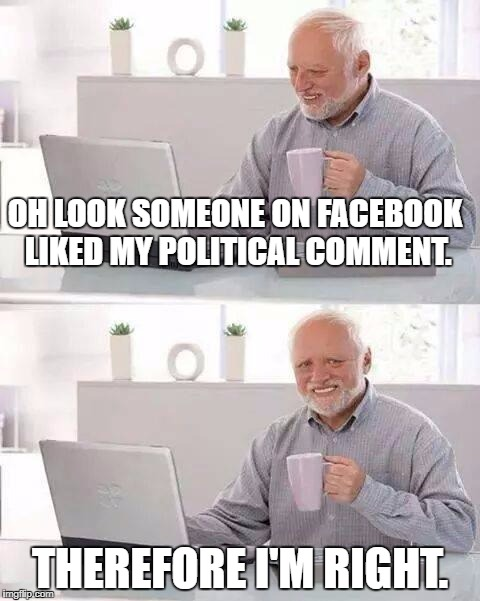 The life of Facebook politicians | OH LOOK SOMEONE ON FACEBOOK LIKED MY POLITICAL COMMENT. THEREFORE I'M RIGHT. | image tagged in memes,hide the pain harold,political meme,facebook | made w/ Imgflip meme maker