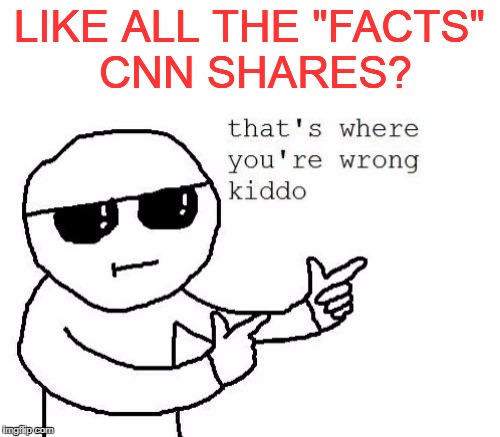 "LIKE ALL THE ""FACTS"" CNN SHARES? 
