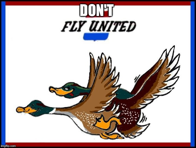 Unfriendly skies of United  | DON'T | image tagged in united airlines | made w/ Imgflip meme maker