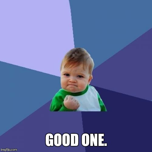Success Kid Meme | GOOD ONE. | image tagged in memes,success kid | made w/ Imgflip meme maker