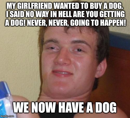 Now take him for a walk dear | MY GIRLFRIEND WANTED TO BUY A DOG. I SAID NO WAY IN HELL ARE YOU GETTING A DOG! NEVER, NEVER, GOING TO HAPPEN! WE NOW HAVE A DOG | image tagged in memes,10 guy,funny | made w/ Imgflip meme maker