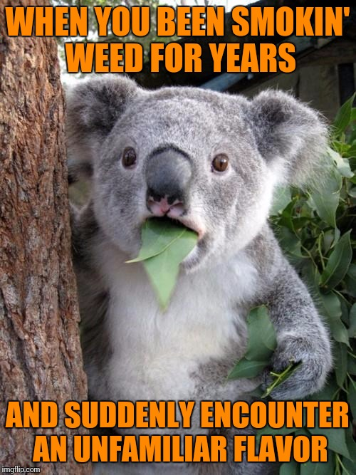 "Now I Know What ""Piney"" Means 