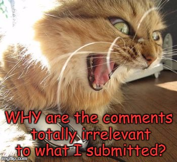 Anyone else find this annoying? | WHY are the comments totally irrelevant to what I submitted? | image tagged in angry cat online,comments,memes | made w/ Imgflip meme maker