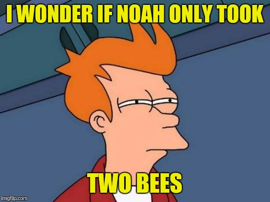 Futurama Fry Meme | I WONDER IF NOAH ONLY TOOK TWO BEES | image tagged in memes,futurama fry | made w/ Imgflip meme maker