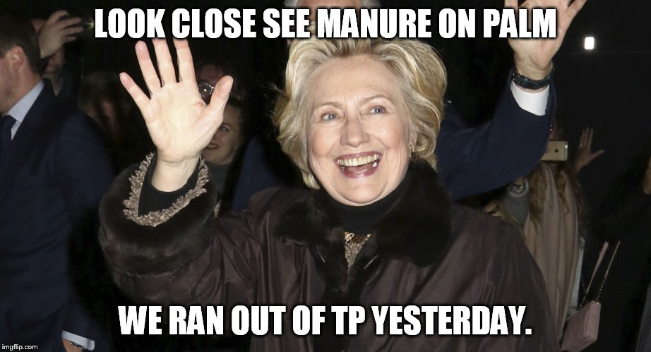 LOOK CLOSE SEE MANURE ON PALM WE RAN OUT OF TP YESTERDAY. | made w/ Imgflip meme maker