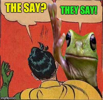 Frog Slapping Robin | THE SAY? THEY SAY! | image tagged in frog slapping robin | made w/ Imgflip meme maker